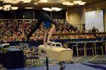 GWGF2013BigShow 163 pommel